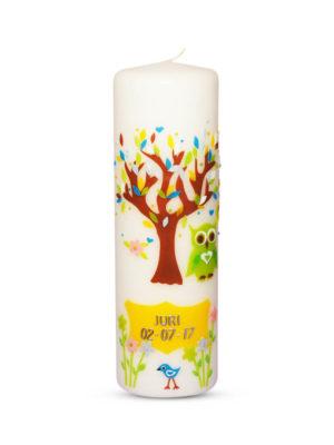 taufkerze-mädchen-junge-lebensbaum-eule-1-grün (1)
